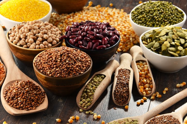 Top Plant Based Proteins
